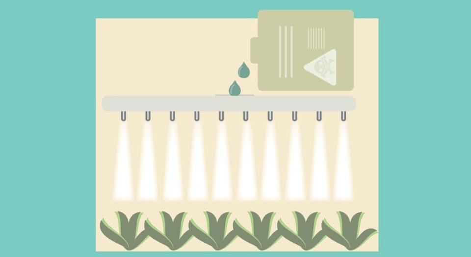 農薬付きの水草